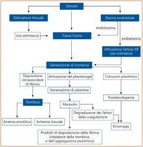 Zini_piattaforme_di_diagnosi_in_ematologia_Figura_138