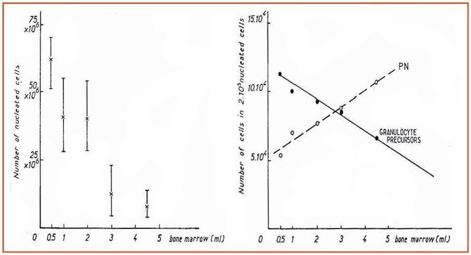 Zini_piattaforme_di-diagnosi_in ematologia_Figura_24