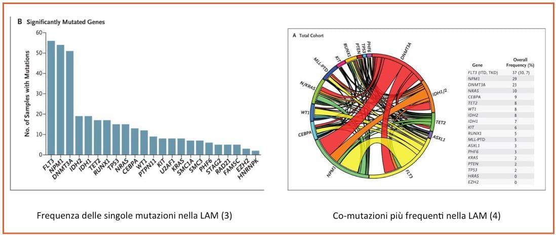 Ferrara_Il_paradosso_di_simpson_e_impatto delle mutazioni_Figura_ 1