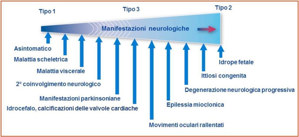 GIONA_Malattie_Metaboliche_congenite_Figura_2