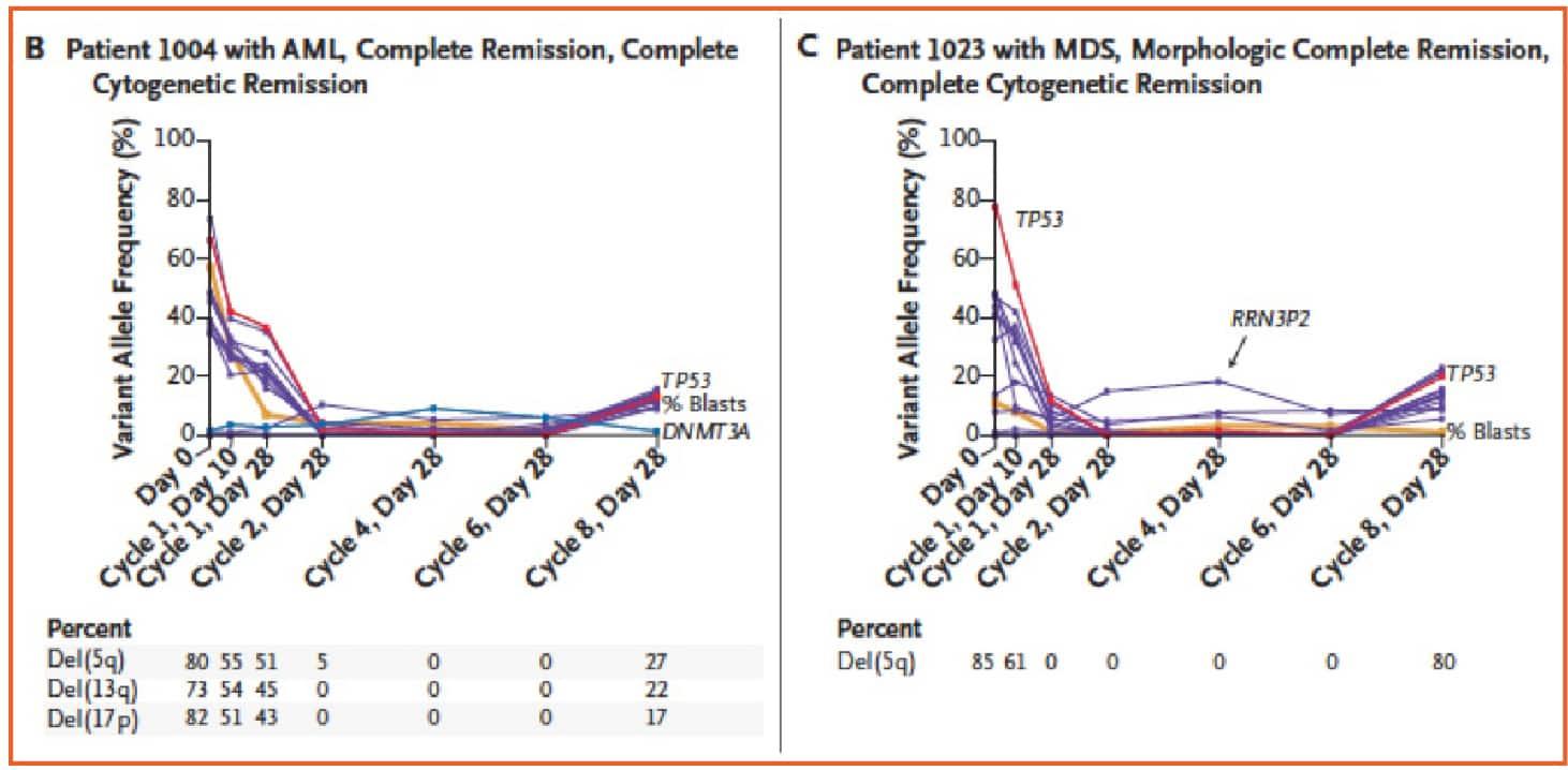 tp53-and-decitabine-in-acute-myeloid-leukemia_figura_4